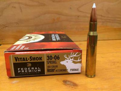 30-06 Springfield 180 Grain Nosler Accubond (shown)