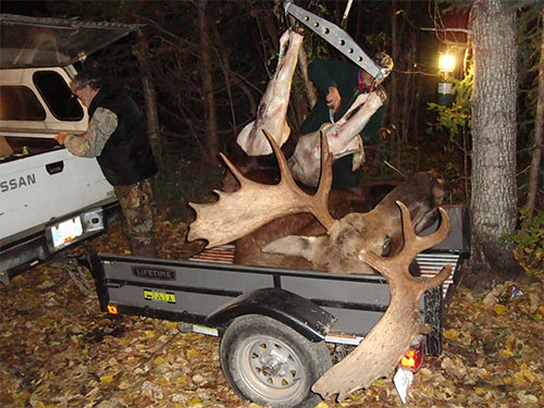 Fred's moose on gambrel