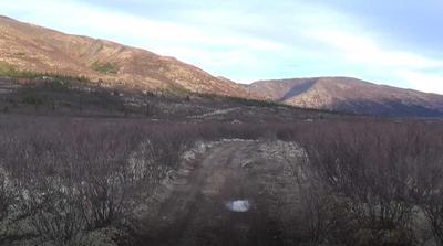 Moose Hunting Trail