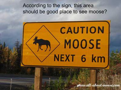Moose Highway Sign