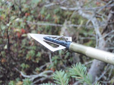 Traditional Archery Broadhead