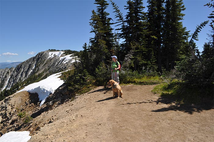 Big Buck Mountain Summit