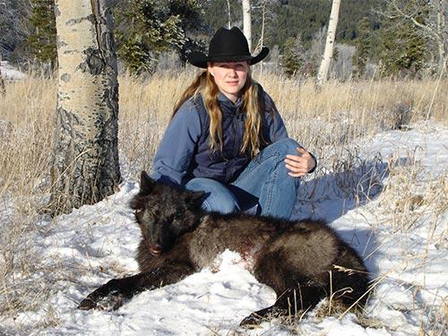 British Columbia Moose Population Trends