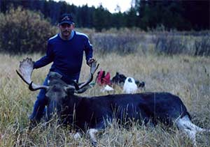 Bow Hunting Moose Success