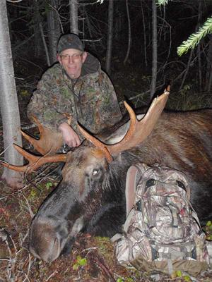 British Columbia Bull Moose
