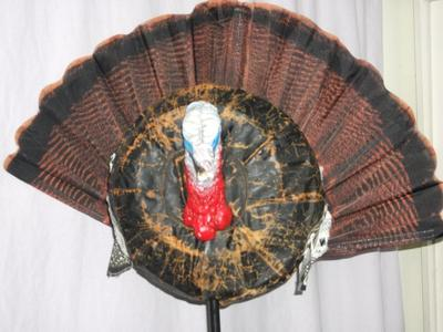 Competed Pop-up Turkey Decoy