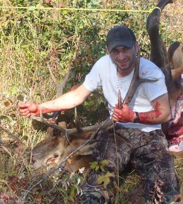 Vince Campbell's Elk