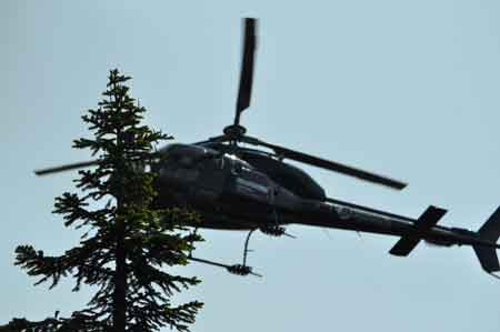 Helicopter for hunting