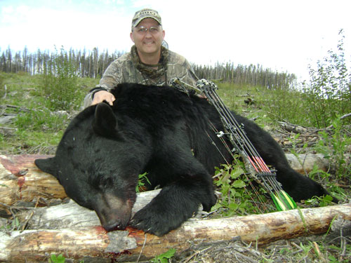 Hunt Big Bears in Central BC