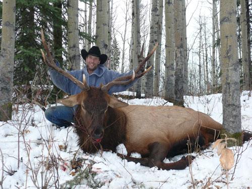 Hunt Big Elk in Central BC