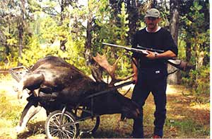 Moose on Cart