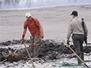 Moose rescue digging around the moose