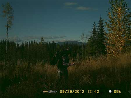 spraying moose scent