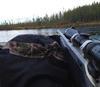 Moose Hunting Rifle