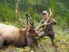 My Biggest Elk