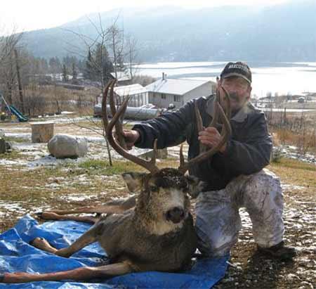British Columbia Trophy Mule Deer
