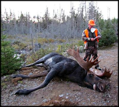 Filling out the paper work - Big Moose
