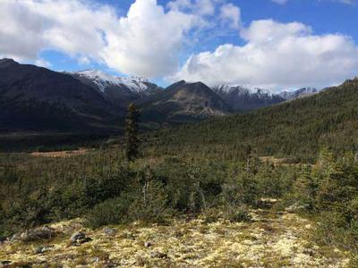There are moose in these hills during the early season