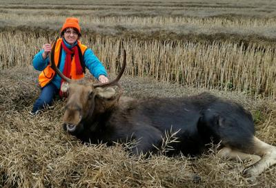Grade A - Grain Fed Alberta Moose