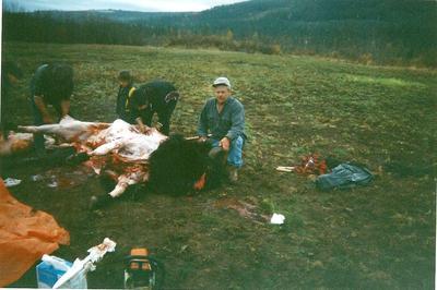 Here's a nice buffalo same trip