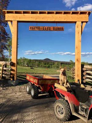 The Puntzi Lake Ranch ATV Trailer